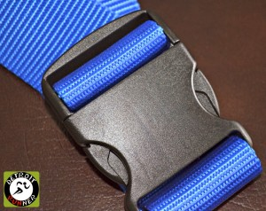 Hatfield Strap™ Buckles